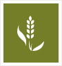 Agri-Products-Spices